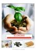 PDF de la brochure - application/pdf